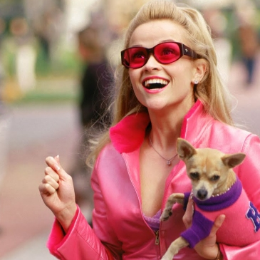 Elle Woods and bruiser Legally Blonde